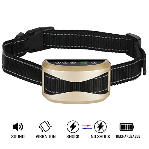 You Tube Shock Collar For Dogs