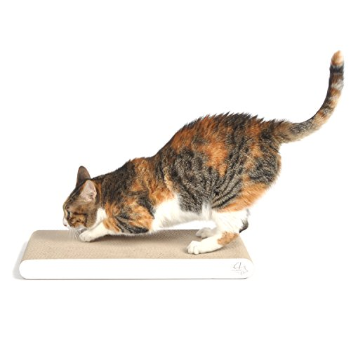 Flat Cat Scratch Pad