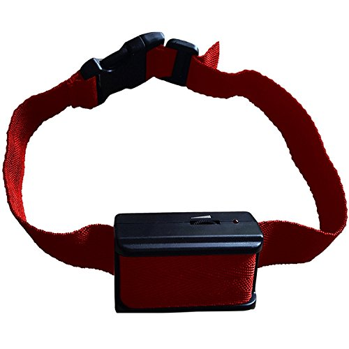 Best Shock Collar To Stop Barking Dog