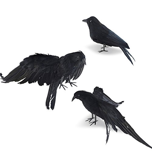 Crow Bird Prop : Halloween realistic handmade crow prop pack black