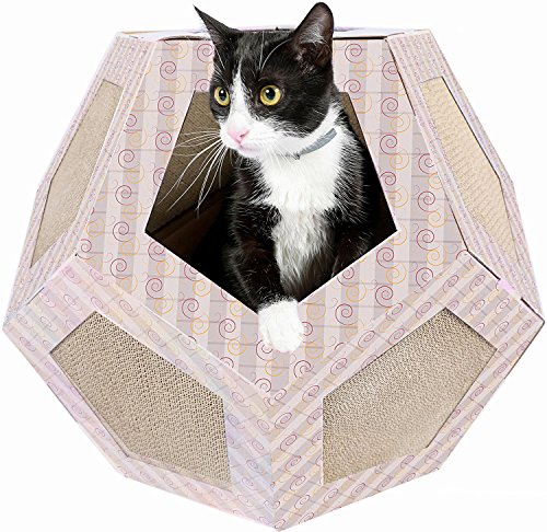 How To Make A Cat Turbo Scratcher