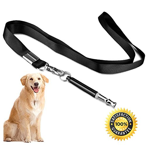 Stop Whistle Training Gun Dog
