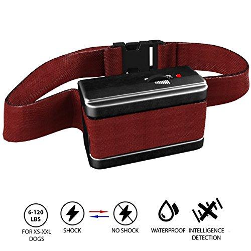 Best Electronic Dog Barking Collar