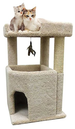 Big Kitty Condo Cat Furniture For Large Cats Best Cat