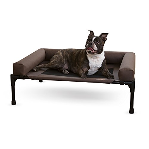 Dog Beds That Stay Cool
