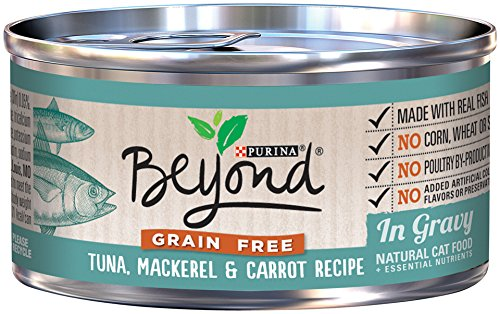 Canned Dog Food Purina No Grain