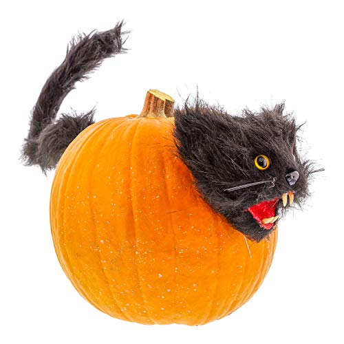 Scary kitty head and tail with push pin stake prongs - Scary yellow eyes ...